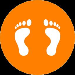 Foot Print-256-2